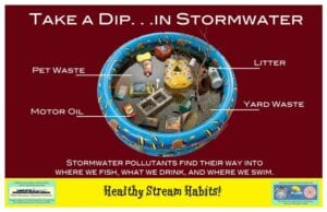 take a dip in stormwater image of pool with debris inside